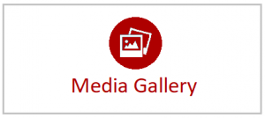Click image to navigate to the media gallery